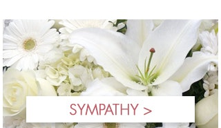 Show Them You Care with Sympathy Flowers by Stadium Flowers!