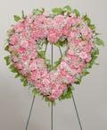 Classic Carnations - Open Heart