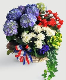 A white basket filled with red, white and blue blooming plants to honor those that have served.