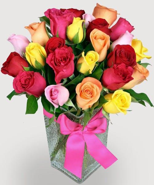 Bright Mixed Roses