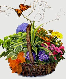 A brown basket overflowing with the brightest flowering plants available.