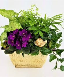 A dish garden of  green tropical plants and an African Violet, accented with a garden friend in a hammered classic container.