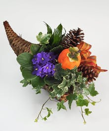 Green plants are nested with pinecones in a cornucopia with a blue African violet and contrasting orange pumpkin.