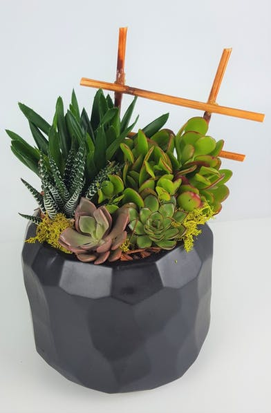 A mix of succulents and easy-care plants in a opalescent black pot that is finished off with wood, rocks, and bamboo.