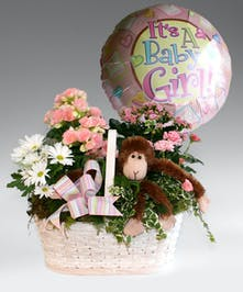 This is gift is a bundle of joy to show your excitement for someone's new bundle of joy! This comes as trio with blooming plants in a basket, a balloon, and a stuffed animal