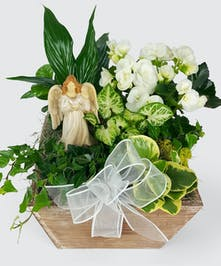 A wooden box of tropical green plants and white blooming plants. Angel may vary based on availability.