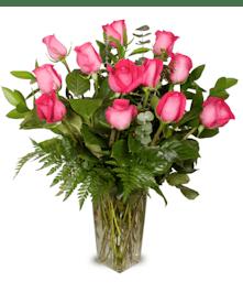 One dozen premium long-stemmed pink roses