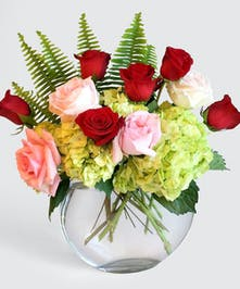 Garden Roses, Classic red roses and Hydrangea come together in a posh display of summer beauty.  Accented with this stylish Moon Shaped vase.