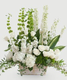 Stunning design of white and green blooms featuring white roses, hydrangea, and other premium accents designed in a white basket. Approximate size is 20