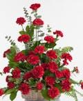 Red Carnation - Floor Basket