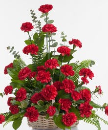 Classic red carnations beautifully designed in a basket. Approximate size for the standard design is 20