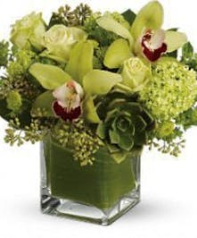 Green cymbidium orchids, roses and succulents, artfully arranged in a glass cube vase.