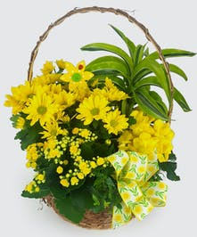 Yellow blooming plants and tropical green plants nested in a tall handled basket.