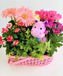 Send a big welcome with a pink basket filled with pink and white blooming plants and a plush toy.  Approximate size of Deluxe (Shown) is 13