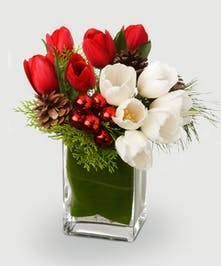 Winter tulips, fresh greenery, pine cones and shiny Christmas ornaments create a unique holiday arrangement perfect for your home or gifting needs!