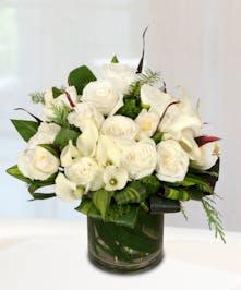 Ivory Calla Lilies Floral Arrangement - Stadium Flowers
