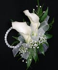 Calla Lily Package