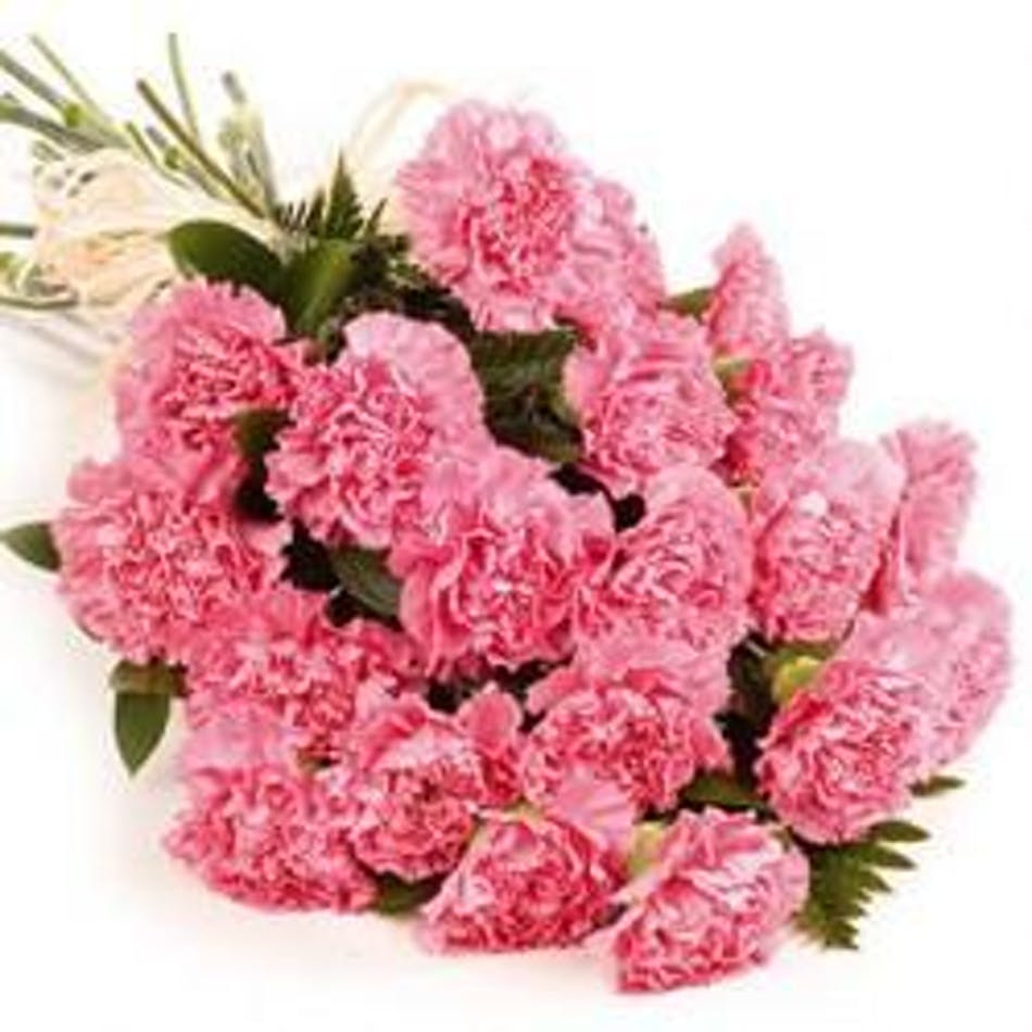 Breathe Fresh Air Choose The Best Tropical Fan: Bunch Carnations -Stadium Flowers