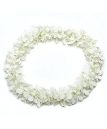 Double White Orchid Lei Delivery Seattle (WA)