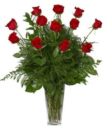 One Dozen Beautiful Fresh Red Roses designed with beautiful greenery