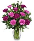 Dozens and Dozens of Carnations