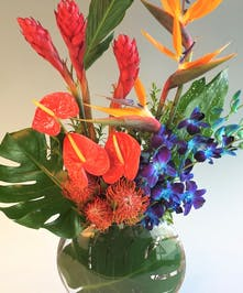 Tropical Ginger , orchids & Antherium design complimented with tropical foliage. Send a beautifully crafted Keepsake vase with fresh tropical flowers.