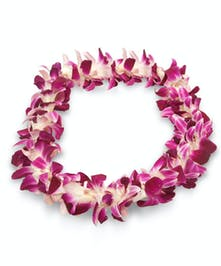 Single Orchid Lei perfect for graduations and special occasions.