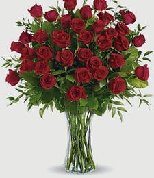 Dozens and Dozens of Red Roses