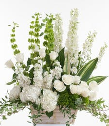 Premium Green and White - Basket design