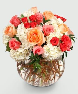 Hydrangea Flower Delivery - Everett & Lynnwood, WA - Stadium