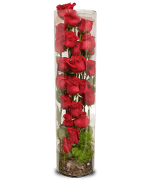 Luxe Spiral Roses