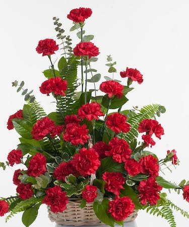 Red Carnation Floor Basket Stadium Flowers