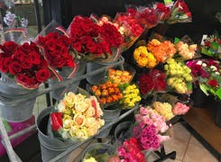 Roses and carnations in a variety of colors, shapes and sizes
